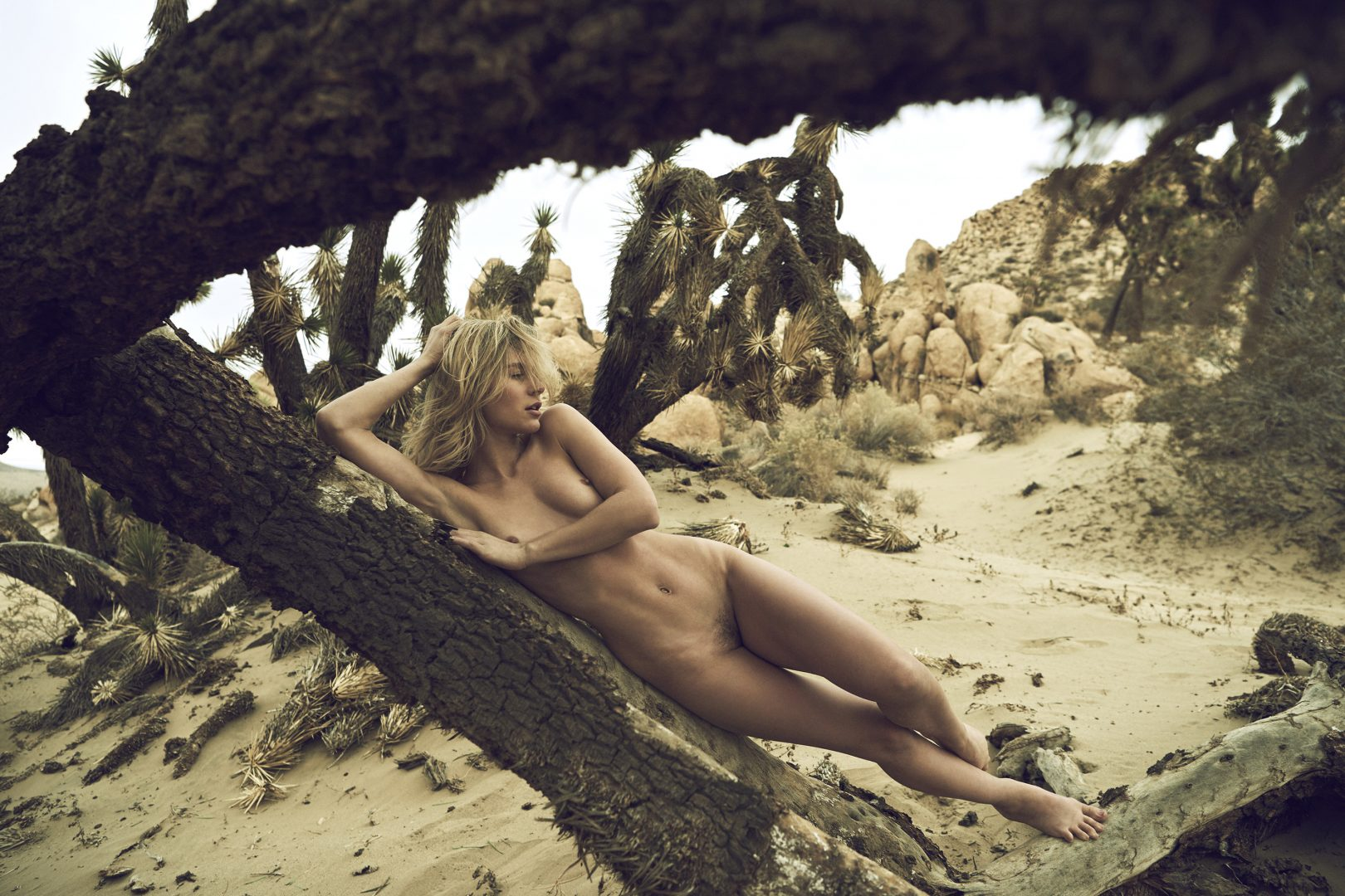 Naked girl lying on Joshua tree in the desert by Stefan Rappo