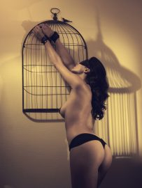 Thumbnail Girl in lingerie tied to a cage by Stefan Rappo